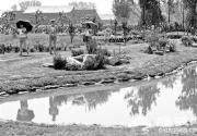 500亩湿地公园亮相世葡园
