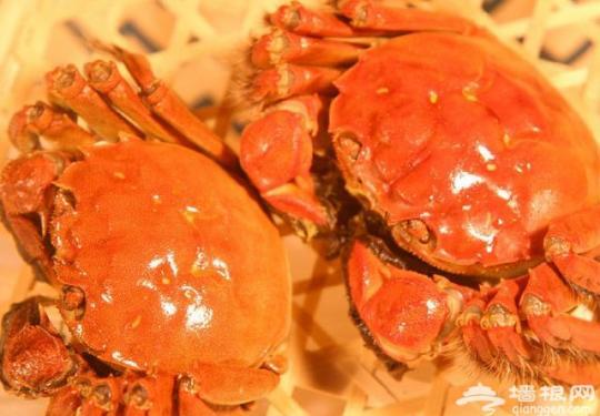 秋天吃螃蟹的禁忌:8个不能吃!