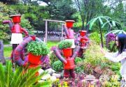 2014第六届北京植物园菊花?#24149;?#33410;周四开幕