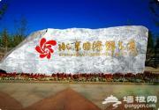 2014北京菊花文化节 顺义鲜花港菊花飘香客满园