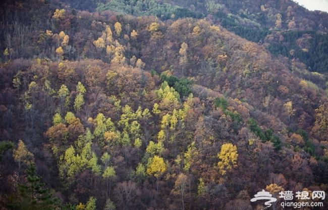 2014初冬赏涞源的最美山色 体验惊险白石山玻璃栈道