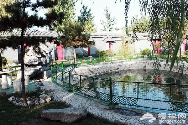 北京特色温泉推荐:京城后院 年轻人的活力聚集地