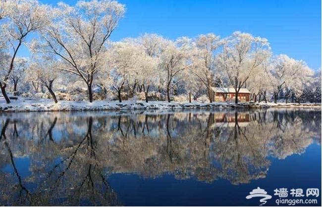 寻找最美北京  京城最佳赏雪地大盘点