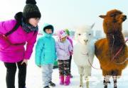 2015玉渊潭公园冰雪节18日开幕 28米滑道将亮相
