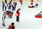 北京园博园1月16日起变身冰雪世界 门票30元