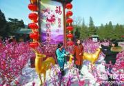 香山春节举办登高祈福会