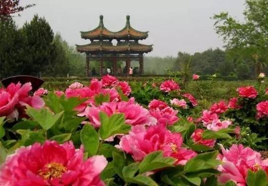 持第三届北京农业嘉年华门票免费游栾川七大A级景区