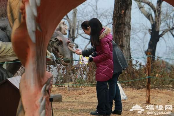 2015北京清明小长假去哪玩 植物园人间仙境赏春花