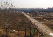 带孩子去哪玩 最健康的14个京郊有机农场