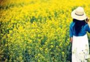 不下江南 也可赏江南美景 北京 5、6月份赏油菜花攻略指南