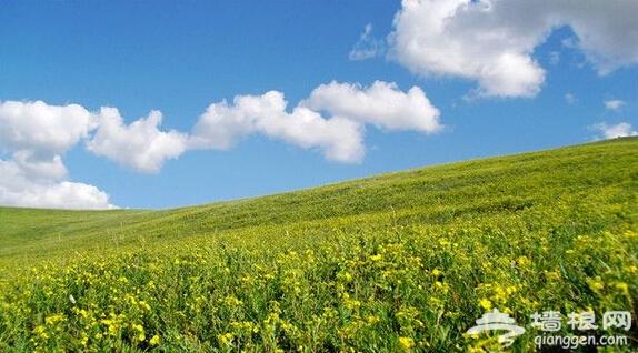 人间天堂 北京周边十处草原自驾游