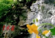 2015年北京灵慧山5月19日旅游日免费送票