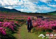 初夏逍遥游 中国六月最美旅游目的地推荐