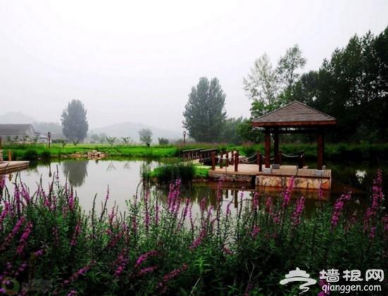 """京津那些鲜为人知的""""野水""""[墙根网]"""