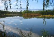 暑假带孩子去哪里玩 北京湿地公园大盘点