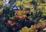 京郊最美的秋景 赏秋可别去错了地方