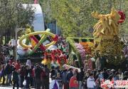 园博园国庆65万株鲜花种出花车 绿色巨龙长竟成金龙
