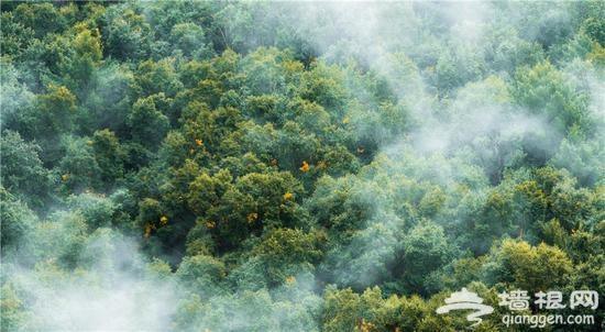 灵气雾灵山 不见南山南只在北京北