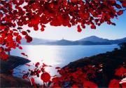2015金海湖红叶节游玩指南