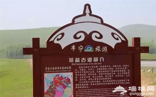 追寻中国最美的秋色木兰天路