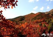 北京秋天去哪看红叶 周末自驾红螺寺线路推荐