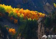 雾灵山的秋景不是梦境 胜似仙境