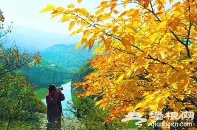 北京公园风景区推荐14处赏叶好去处