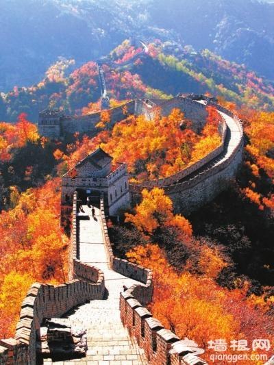 登长城赏红叶 3条帝都最美路线令人羡慕