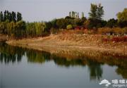 2015北京奥林匹克森林公园秋日彩叶展开幕