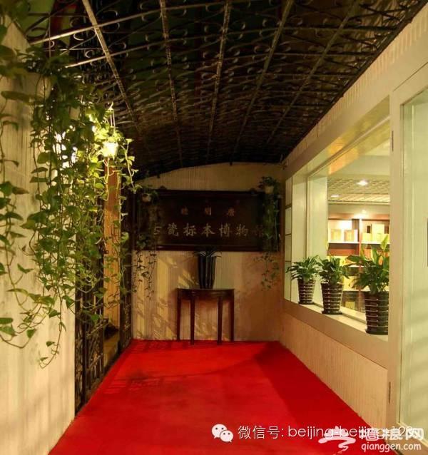 京城深藏不露的私人博物馆,趁着人少赶紧去![墙根网]