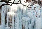 2016沕沕水冰瀑节开幕