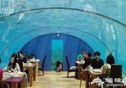在北京,你一定想去的那些餐厅!