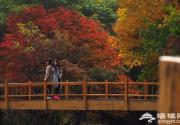2016年全國旅游年票北京首發 98元游覽全國852家景區