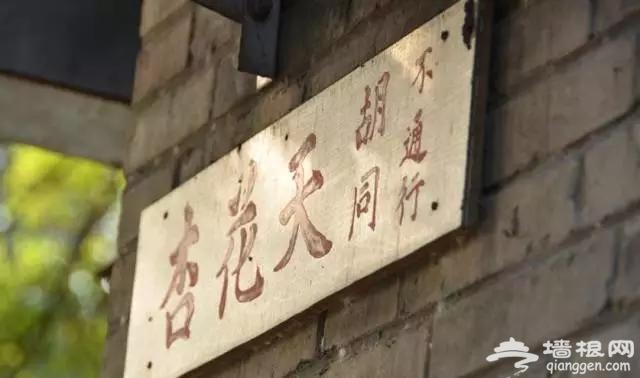 杏花天、百花深处……北京十个超美地名,还没去就醉了[墙根网]