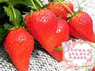 昌平草莓元旦开摘![墙根网]