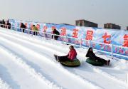2015-2016玉渊潭公园第七届冰雪季开幕