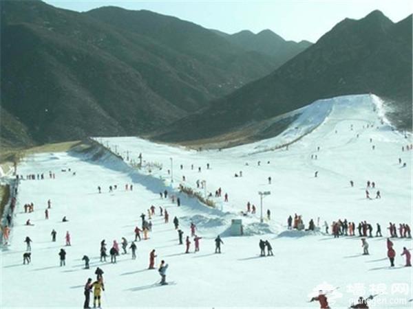 寒冬腊月不孤单 呼朋唤友来滑雪[墙根网]