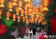 京郊红螺寺红灯高挂喜迎新年