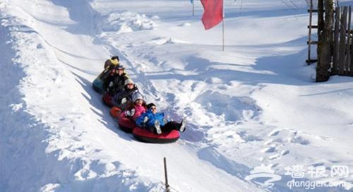 元旦小长假 香山滑雪场走起来[墙根网]