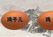 """您知道老北京话里""""鸡子儿""""与""""鸡蛋""""的区别吗?"""