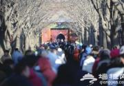 雍和宫举行腊八盛典:舍粥渊源可追溯至清朝