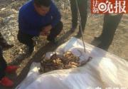 北京潭柘寺附近山洞发现两具人体骸骨