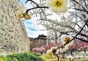 """""""没有围墙""""还免费 北京溜娃好公园"""
