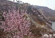 北京怀柔水长城春季赏花攻略