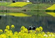 春季钓鱼攻略