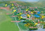 一图在手 看遍北京植物园各色春花
