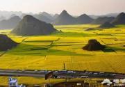 中国十大花海 3月开始绽放