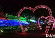 昆明世博园国际梦幻灯光节 3000万盏灯同时点亮世博园