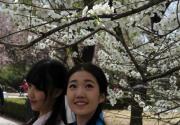 汉服美女清明现身北京植物园插柳赏花