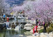北京市屬公園增設74處售票窗口 建議錯峰游園